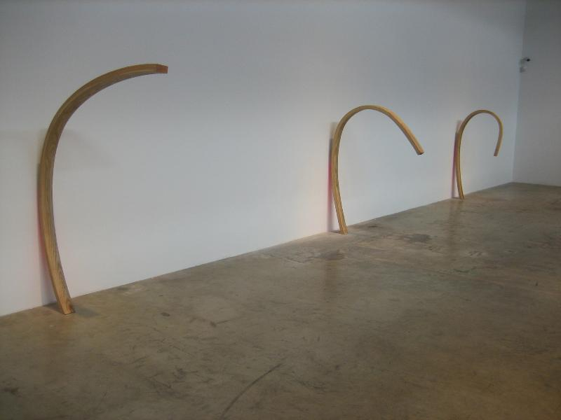 June 2008, New Work by Martin Oppel at Galerie Emmanuel Perrotin, Miami