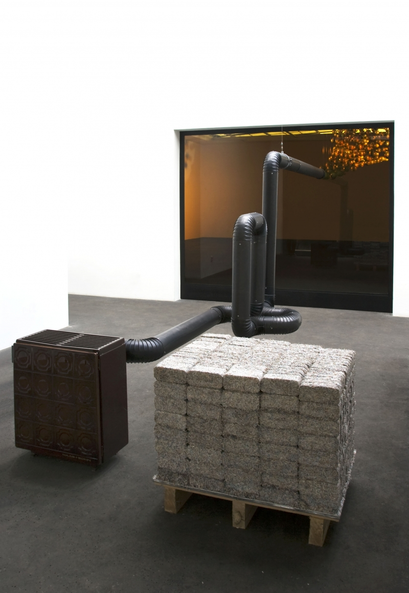February 2009, Natascha Sadr Haghighian @ Galerie Johann Koenig