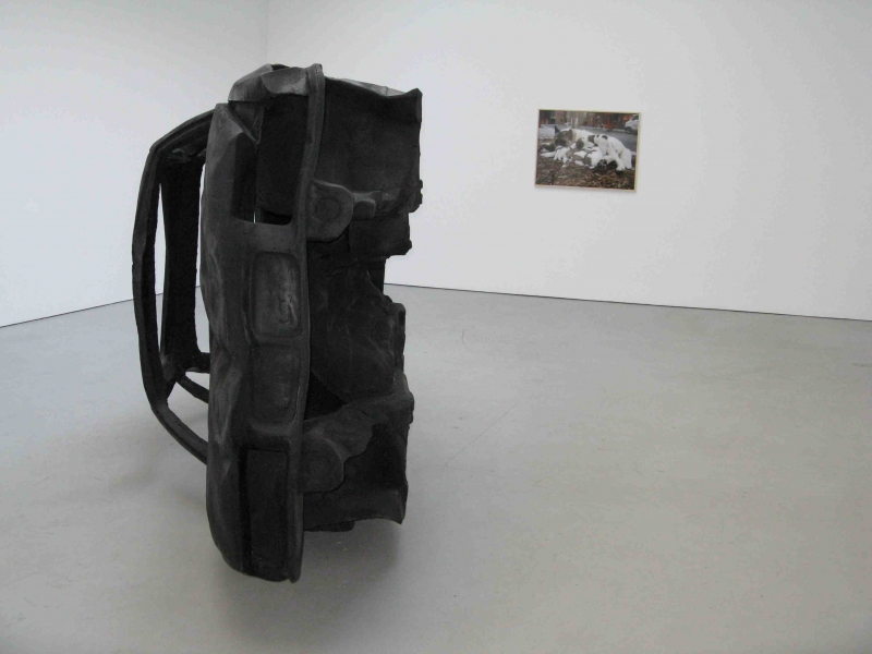 May 2009, Adel Abdessemed @ David Zwirner
