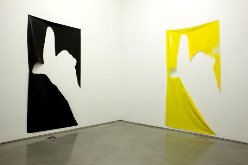 October 2009, Davis Rhodes @ Team Gallery