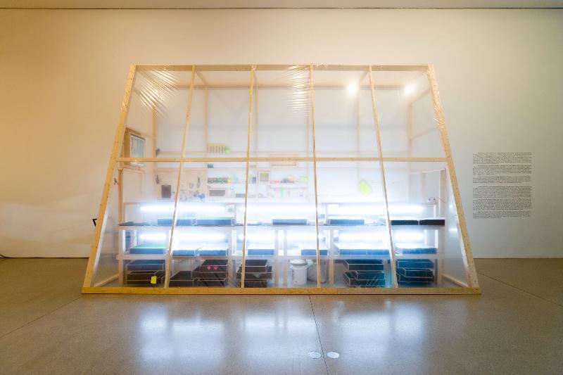 September 2007, Phoebe Washburn @ Deutsche Guggenheim